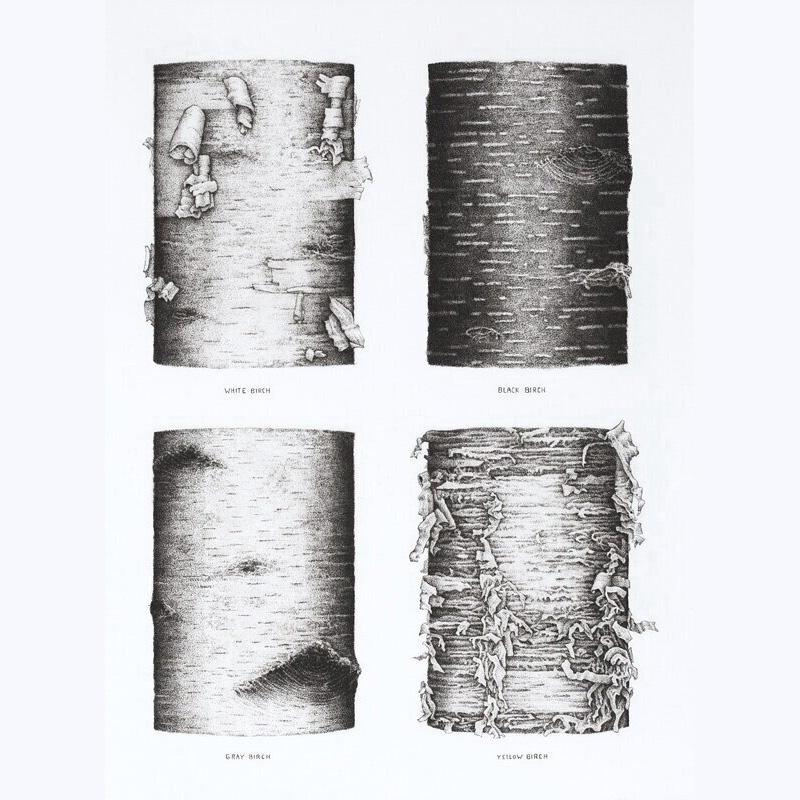 J. Ann Eldridge Four Birches