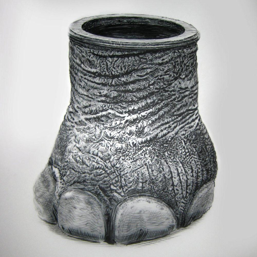 artist rick schaefer drawing elephant foot